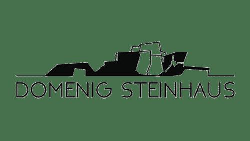 Domenig Steinhaus